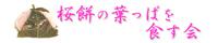 桜餅の葉っぱを食する会