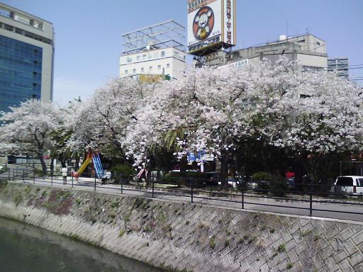 猿猴橋から広島駅方面