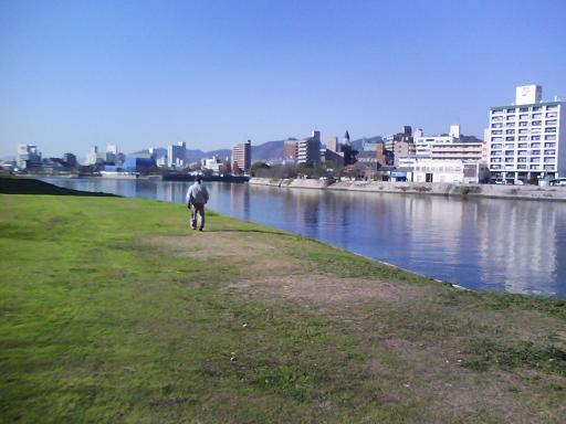 太田川河川敷南下中