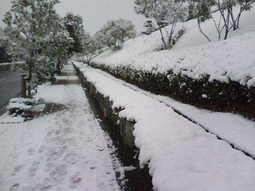SnowMonutain