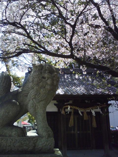 京橋川 市杵島神社