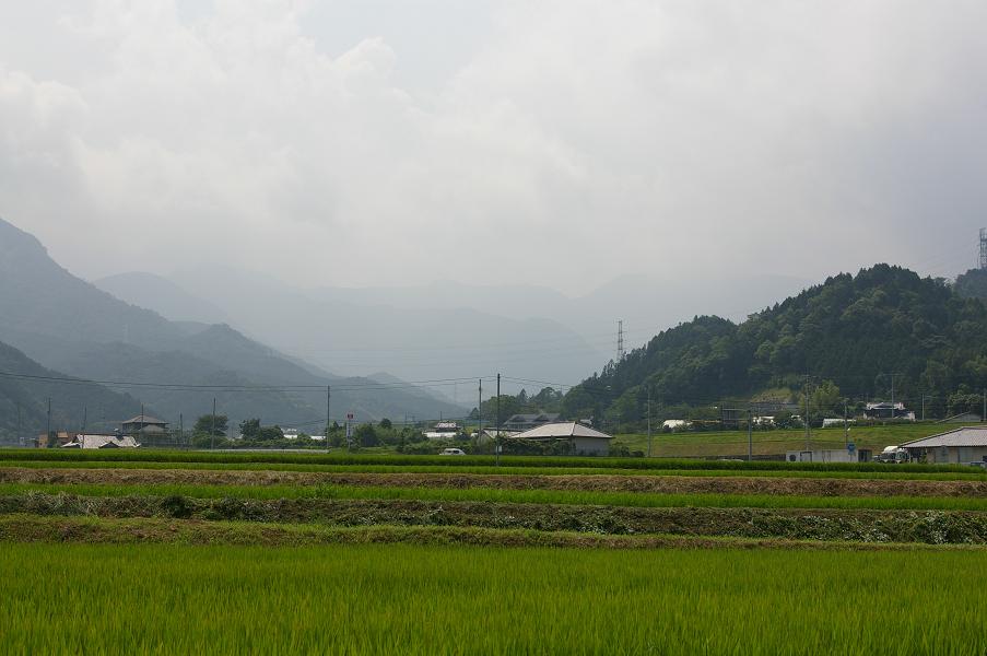 愛媛県道209号美川松山線 皿ヶ嶺方面