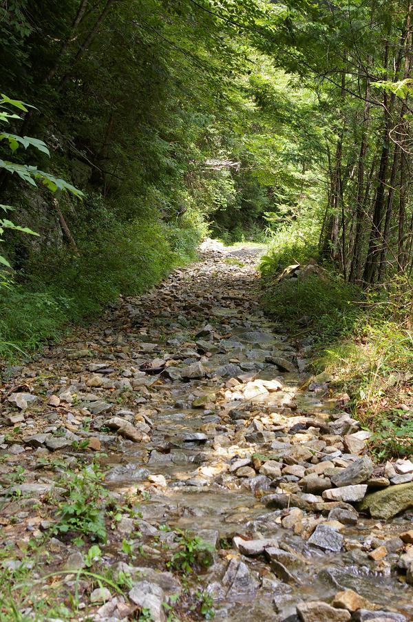 面河渓 鉄砲石川ルート 布引の滝より上流方面