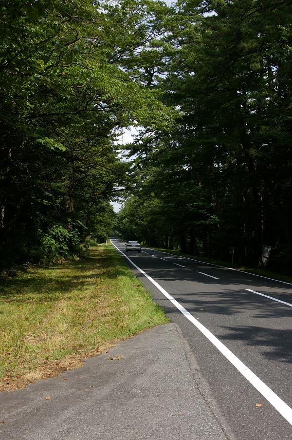 県道24号(大山道路)