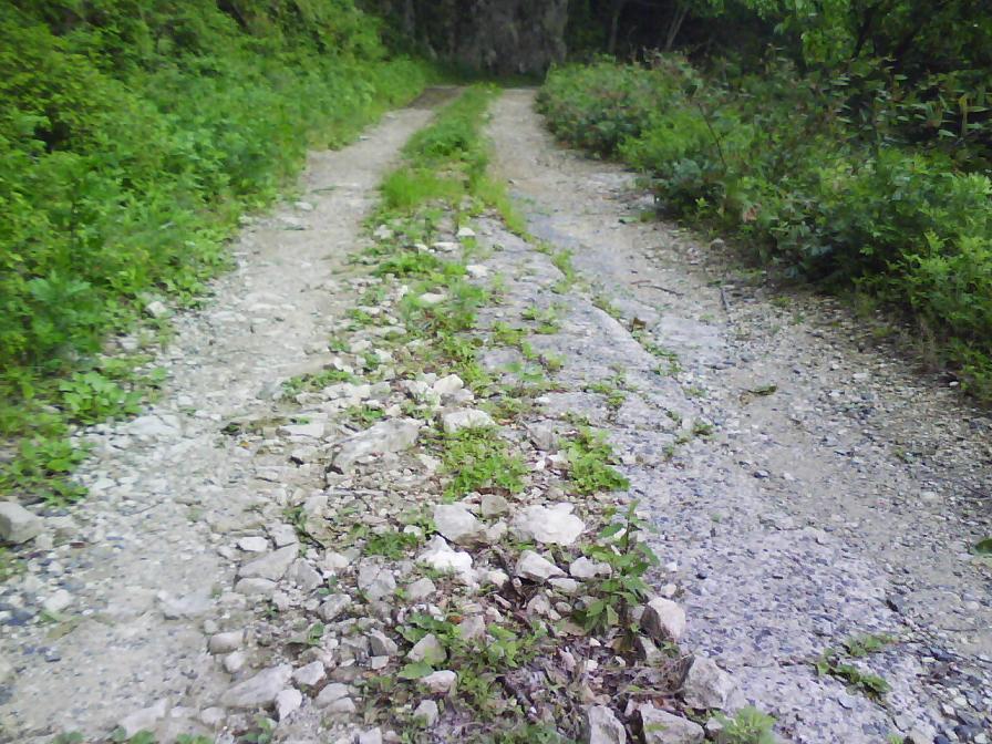 林道木谷線 路面状況1