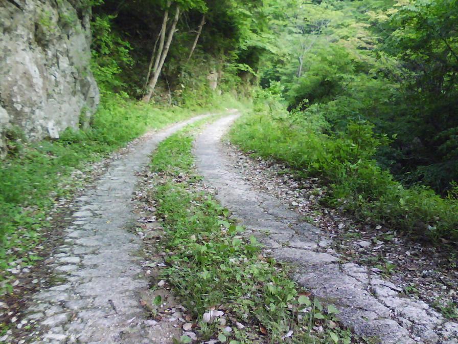 林道木谷線 路面状況2